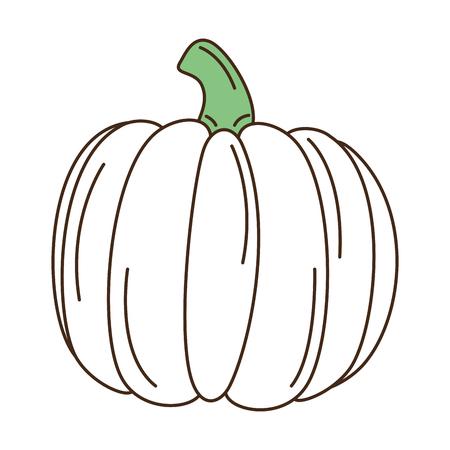 Fresh pumpkin vegetable icon vector illustration design