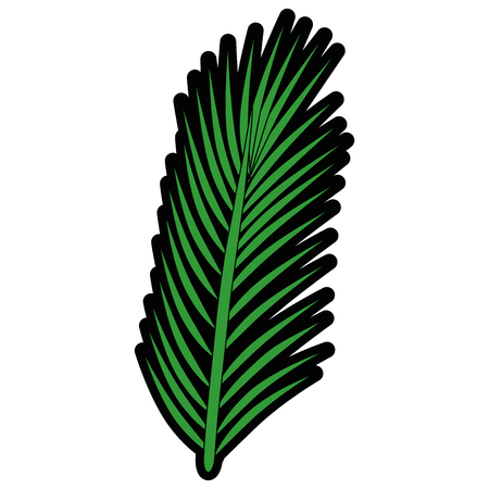tropical leaf icon over white background vector illustration