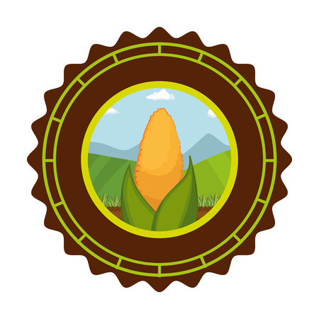 seal stamp with corn icon over white background colorful design vector illustration
