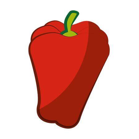 pepper icon over white background vector illustration