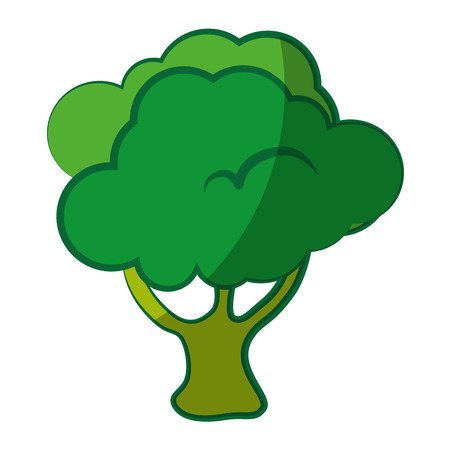 broccoli vegetable icon over white background vector illustration