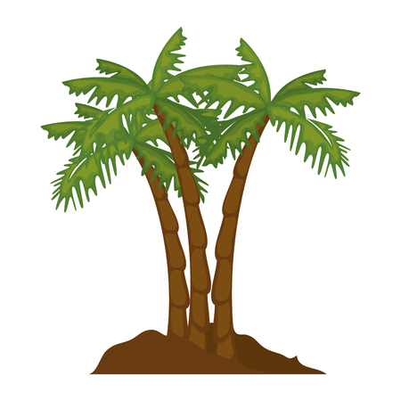 isolated beach palms icon vector illustration graphic design Stock Vector - 82262270