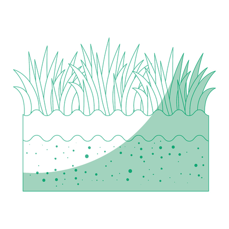 isolated field grass icon vector illustration graphic design