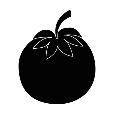 分離のかわいいトマトのアイコン ベクトル イラスト グラフィック デザイン