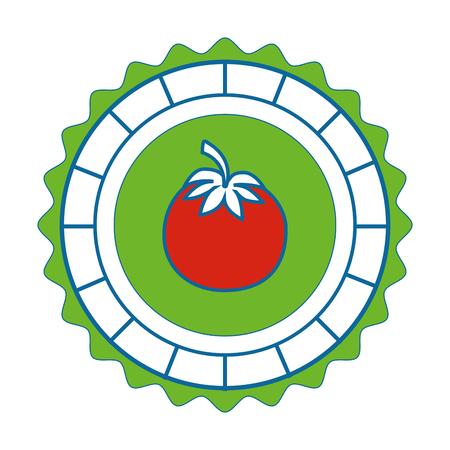 detox: isolated round icon tomato icon vector illustration graphic design