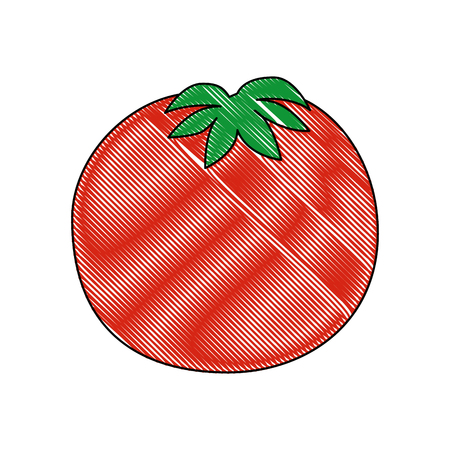 isolated cute tomato icon vector illustration graphic design