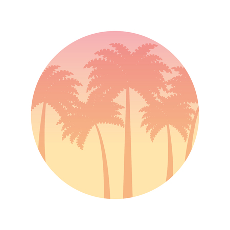 beautiful seascape with palms vector illustration design Stock Vector - 82354224