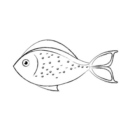 mer poissons isolé icône du design illustration vectorielle Vecteurs