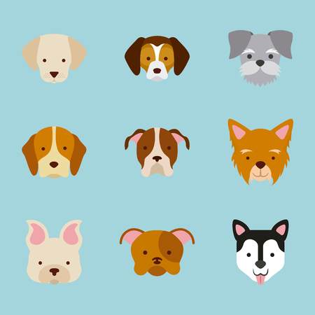 grooming: icon set love dogs vector house illustration design graphic