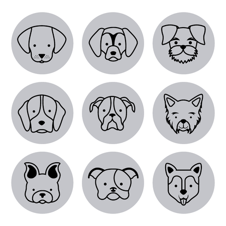 dog grooming: icon set love dogs vector house illustration design graphic