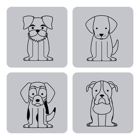 icon set love dogs vector house illustration design graphic