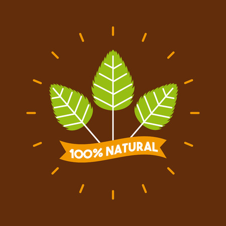plant stevia natural sweetener icon vector illustration design graphic Banco de Imagens - 82559154
