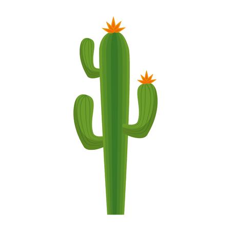 Un cactus icône sur fond blanc. illustration vectorielle Banque d'images - 82561788
