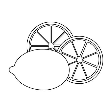 isolated three lemon icon vector illustration graphic design