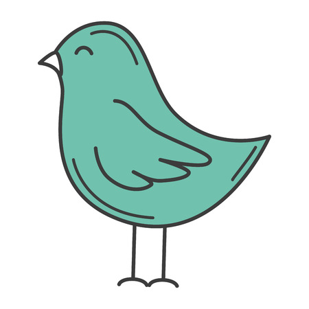 Cute bird isolated drawing icon vector illustration design