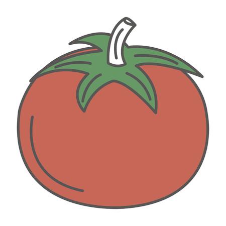 トマト新鮮な分離アイコン ベクトル イラスト デザイン  イラスト・ベクター素材