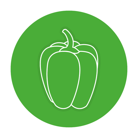 pepper fresh isolated icon vector illustration design