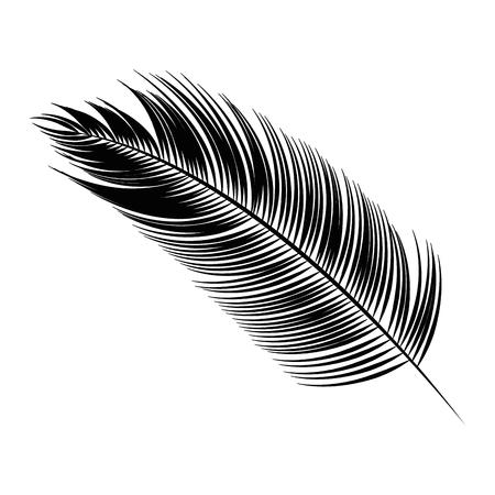 Icona foglia tropicale su sfondo bianco illustrazione vettoriale Archivio Fotografico - 83212709