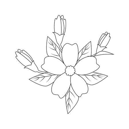 Belle fleur avec des pétales sur fond blanc illustration vectorielle Banque d'images - 83264174