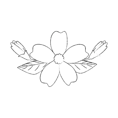 Beautiful flower with petals over white background vector illustration