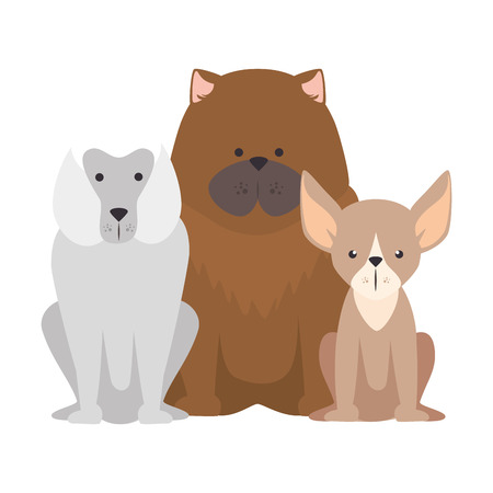cute dogs icon over white background colorful design vector illustration