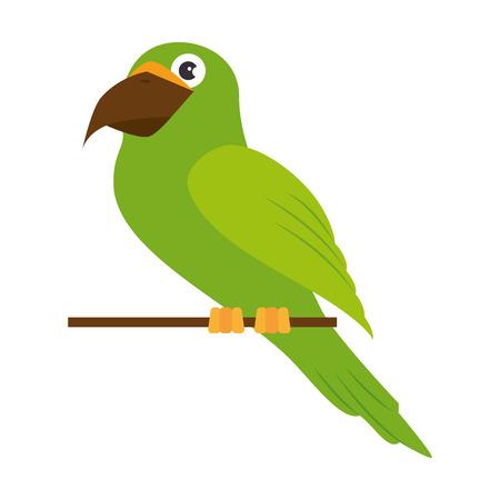 Papegaai vogel pictogram over witte achtergrond kleurrijke ontwerp vectorillustratie Stockfoto - 83265795