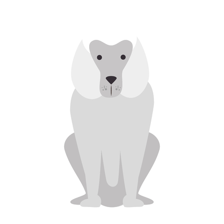 cartoon dog icon over white background colorful design vector illustration Illustration