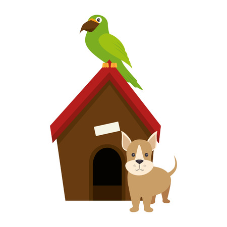 dog house with puppy and parrot icon over white backgorund vector illustration Illustration