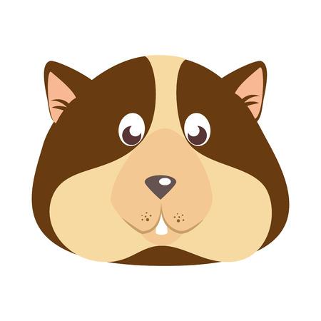 squirrel icon over white background colorful design vector illustration Illustration