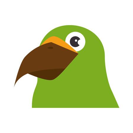 papegaai vogel pictogram over witte achtergrond kleurrijke ontwerp vectorillustratie