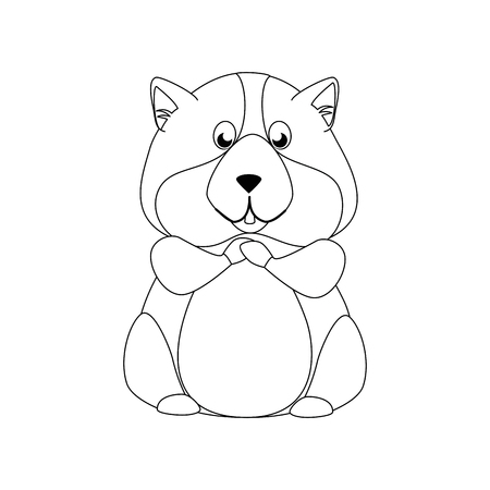 squirrel icon over white background vector illustration