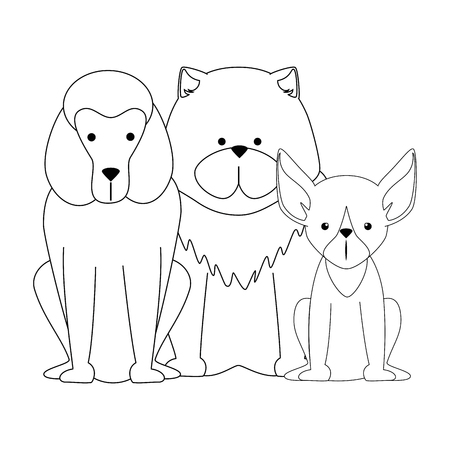 cute dogs icon over white background vector illustration
