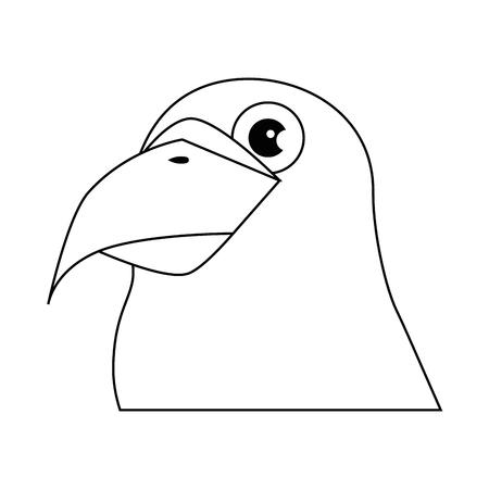 parrot bird icon over white background graphic design vector illustration