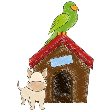 dog house with puppy and parrot icon over white backgorund vector illustration Stock Photo