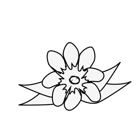 beautiful flower icon over white background vector illustration Reklamní fotografie - 83304282