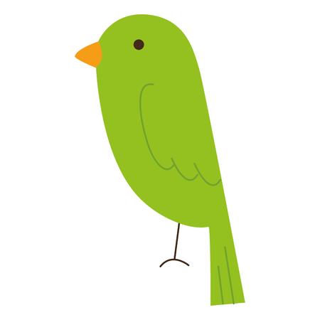 cute bird isolated icon vector illustration design 向量圖像