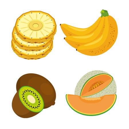 新鮮な有機フルーツ概念ベクトル イラスト グラフィック デザイン