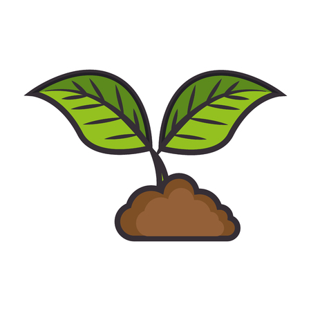 Leaves plant symbol over white background graphic design