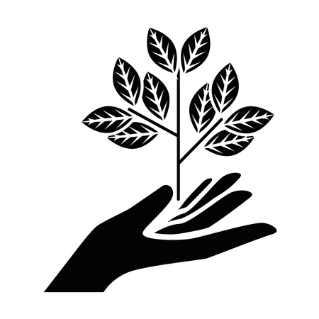 hand holding a plant icon over white background vector illustration