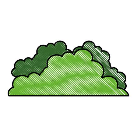 Bush leaves plant icon vector illustration graphic