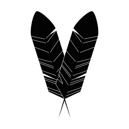 Bird feather symbol icon vector illustration graphic design Illustration