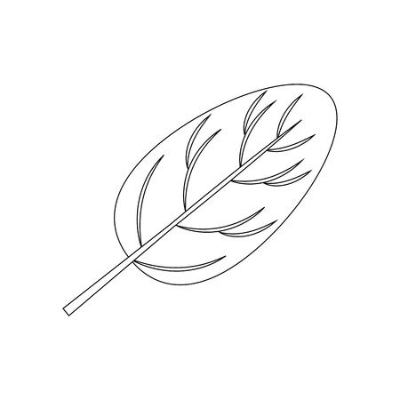 흰색 배경 벡터 일러스트 레이 션 위에 시금치 잎 아이콘 스톡 콘텐츠 - 83818987