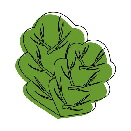 흰색 배경 벡터 일러스트 레이 션 위에 시금치 잎 아이콘입니다. 일러스트