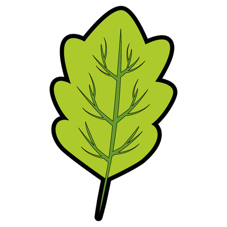 Lettuce leaf icon over white background vector illustration