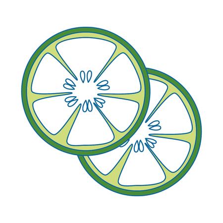 De komkommer snijdt pictogram over witte vectorillustratie als achtergrond.
