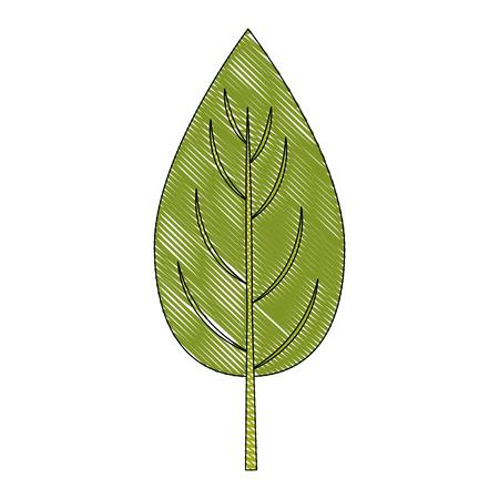 Spinach leaf icon over white background vector illustration Ilustração