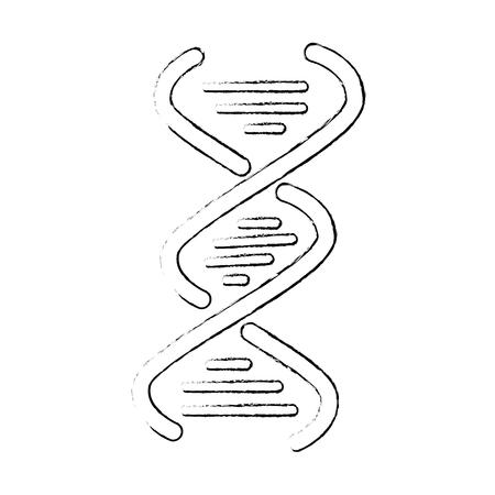 Human dna symbol icon vector illustration graphic design Illustration