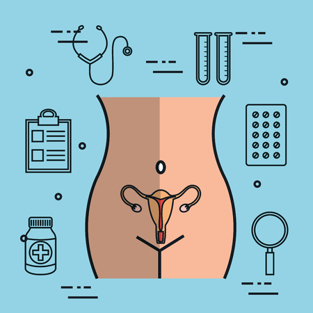 female reproductive system uterus gynecology vector illustration