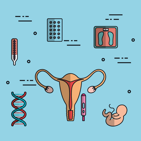 Uterus fertilization pregnancy set collection medical icons illustration. Stock fotó - 83870800