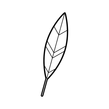 feather ink isolated icon vector illustration design